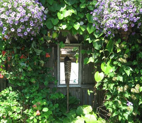 How To Choose An Outdoor Mirror For Your Home Aspired